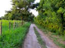 The Dirt Road to Palomino Beach Colombia