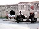 El Coche paseos en Cartagena.jpg