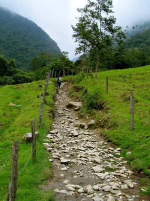 Salento Valle de Cocora Bike Trip Bicycle16 South America