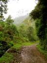 Salento Valle de Cocora Bike Trip Bicycle5 South America