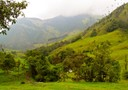 Salento Valle de Cocora Bike Trip Bicycle18 South America