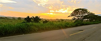 Road to Valledupar at Sunset