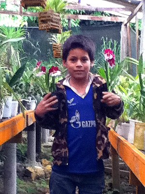 179 Our favorite Peruvian kid, carrying orchids in the greenhouse.JPG