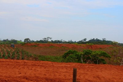 4702 - Red Clay Earth from the Peruvian Jungle near Yurimaguas.JPG